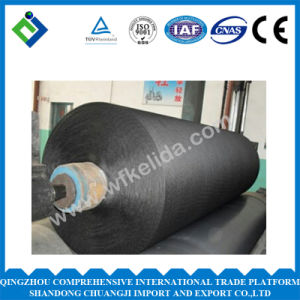 Polyester 1500d Dipped Tire Cord Fabric Used for Rubber Product pictures & photos