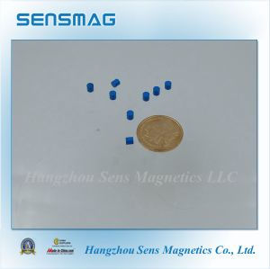 Teflon Coated Permanent Neodymium Magnet for Motor, Sensor, Rotor pictures & photos