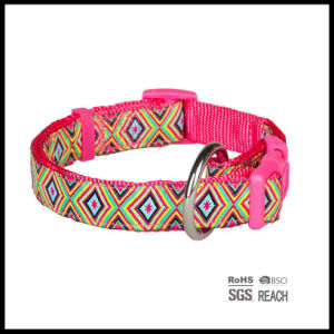 Adjustable Martingale Pet Cat Dog Collar with Woven Ribbon pictures & photos