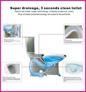 Ceramic Siphonic Flush CSA Flush Water Sense Wine Red Two Piece Toilet pictures & photos