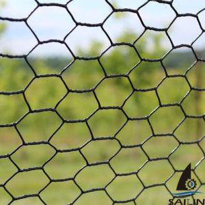 Sailin China Hot Dipped Chicken Wire for Poultry Netting pictures & photos