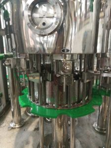 Automatic Bottle Liquid Filling and Screw Capping Machine pictures & photos