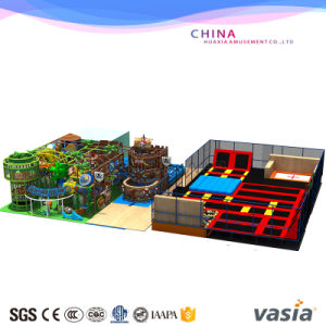 Vasia Attracted Sea World Themes Indoor Playground (VS1-160122-119A-31C) pictures & photos