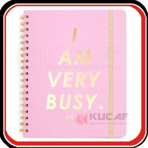 Custom A5 Diary Planner Note Book Paper Spiral Bound pictures & photos