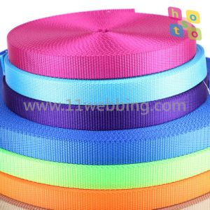 Flat Nylon Webbing for Dog Leashes and Collars pictures & photos