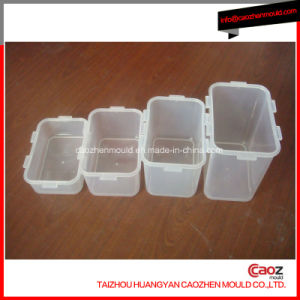 Different Volume Plastic Lock Lock Container Mould