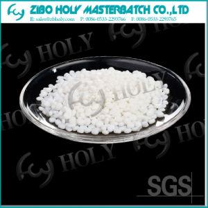 Calcium Carbonate Plastic White Color Masterbatch