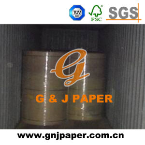 Top Quality Test Liner Paper in Roll Stock for Wholesale pictures & photos