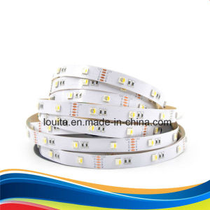 300 LEDs Non-Waterproof SMD5050 RGBW LED Strip pictures & photos