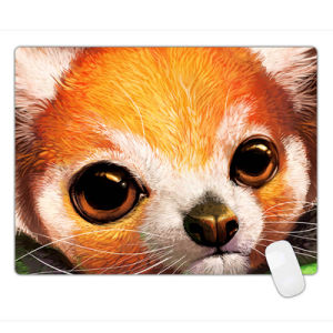 Large Control Surface Gaming Mouse Pad for PC and Mac 600*450*3mm pictures & photos