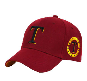 Promotional Unisex Embroidery Baseball Caps Sports Hats pictures & photos