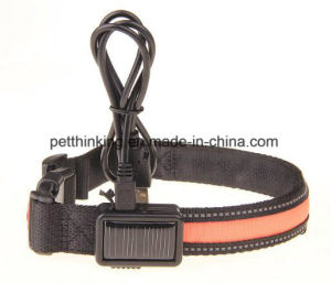 Solar and USB Rechargeable Dog LED Flashing Collar pictures & photos