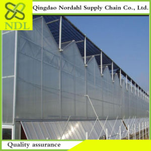 Chinese Fabrication of Thin Film Multi Span Greenhouse pictures & photos
