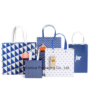 OEM Custom Printed Paper Bag/Shopping Bag /Packaging Bag/Carrier Bag with Handle (BG3002) pictures & photos
