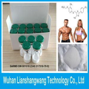 Sarms Gw-501516 (Cardarine) for Endurance and Fat Loss pictures & photos
