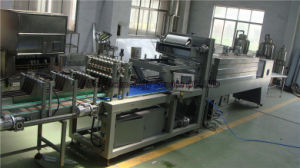Small Scale Fruit Juice Machinery pictures & photos
