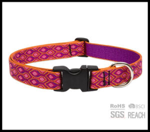 Hot Sell Personalised Designer Pet Dog Collar Embroidered pictures & photos