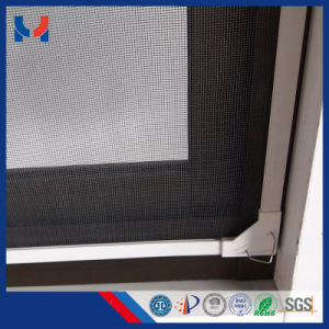 New Design Green Self Adhesive Mosquito Screen pictures & photos