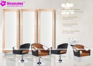 Popular High Quality Salon Furniture Shampoo Barber Salon Chair (P2043E)