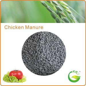 Chicken Manure Fertilizer Fermented Chicken Dung pictures & photos