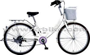 Fashionable and Useful Lady Bikes/City Bike (XR-L2404)