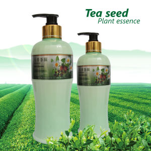 Tea Seed Anti Hair Loss Shampoo (SK-TXCG)