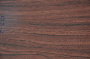 Good Price and High Quality Wood Grain Decorative Printed Paper for MDF and Plywood