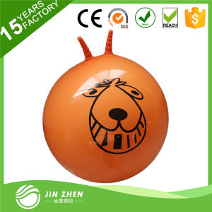Space Hopper Ball 70cm for Age 13+