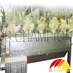 Chicken Head and Neck Plucker for Slaughterhouse Using pictures & photos
