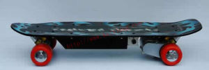 Remote Control Skateboard / Electric Skateboard (RC24V-400C)