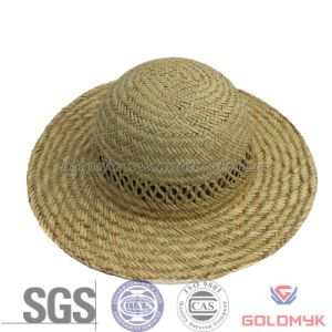 Round Top Hollow Straw Hat (GKA03-D00011) pictures & photos
