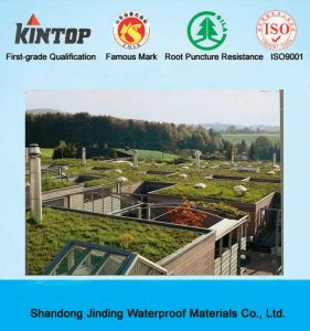 PVC Waterproof Membrane for Roof pictures & photos