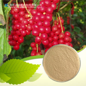 100% Natural Schisandra Chinensis Extract Schisandrins 9% Good Quality pictures & photos