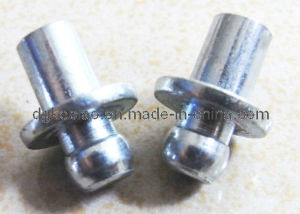 Stainless Steel Cup Head Round Neck Bolts (KB-017)