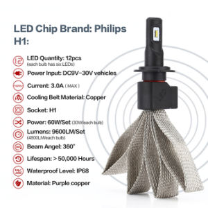 H1 4800lumens 30W 6000k LED Headlights for Cars pictures & photos