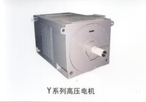 High Voltage Three Phase Induction Motor (Y series(IP23)) pictures & photos