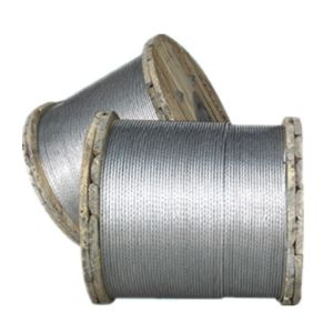 Galvanized Steel Strand - 6