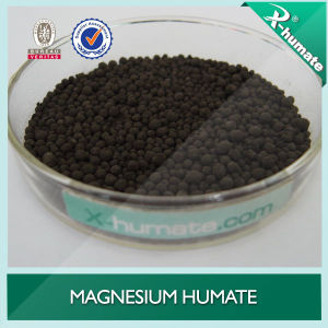 Soil Conditioner Magnesium Humate Granular pictures & photos