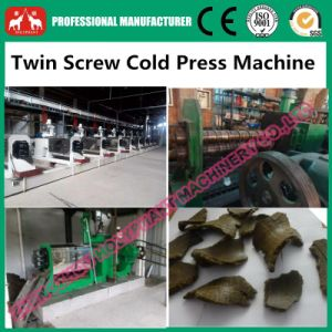 2017 New Developed Twin Screw Low Temperature Cold Press Machine pictures & photos