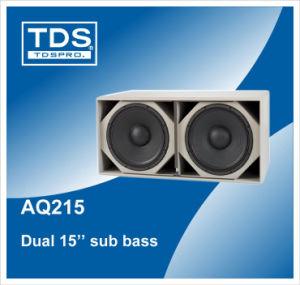 Subwoofer Speaker (AQ215) pictures & photos