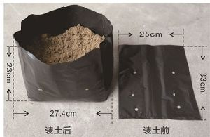 Black Plastic Plant Nursery Poly Bags, Plastic Bag, Non Woven Natural Bag Fabric Eco Bag pictures & photos