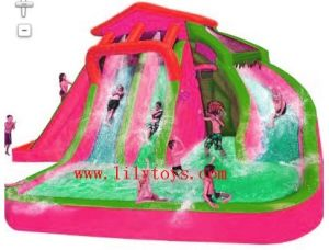 New Inflatable Slide (LILYTOYS-WSL-02AN) pictures & photos