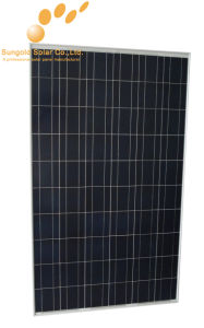 130W Poly Panel Solar Manufacturer in China (SGP-130W)