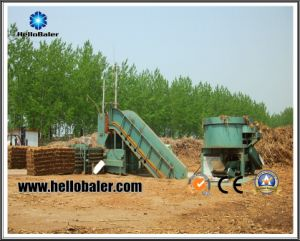 Agricultural Machinery Hydraulic Press Straw/Hay/Palma/Corn Baler pictures & photos