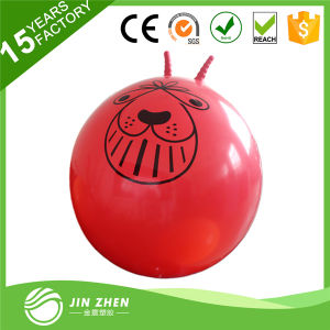 Space Hopper Ball 70cm for Age 13+ pictures & photos