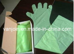 Disposable Plastic Long Glove for Veterinary Use