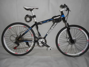 New Fashion Mountain Bicycle (FP-MTB-A030) pictures & photos