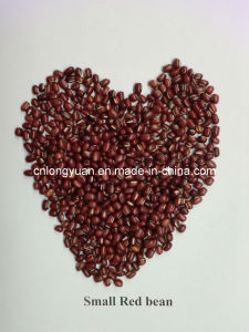 Chinese Beans Small Red Bean pictures & photos
