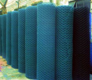 PVC-Coated Hexagonal Wire Mesh pictures & photos