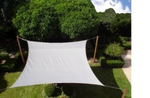 Shade Sail (POLYESTER) pictures & photos